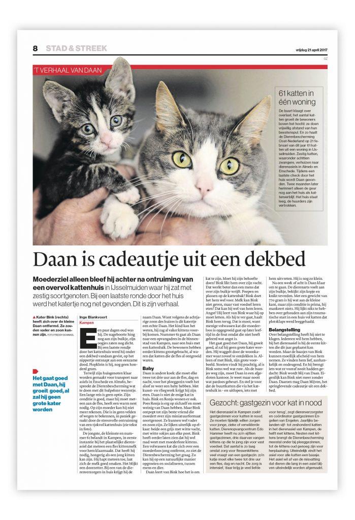 De Stentor, redactionele vormgeving, onderwerp: katten