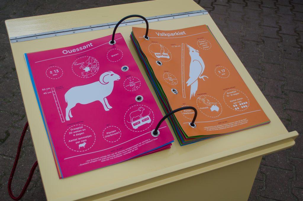 De infographics zijn ontworpen in de huisstijl kleuren van de Kinderboerderij.