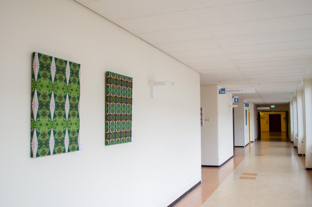Twee foto patronen in Slingeland Ziekenhuis